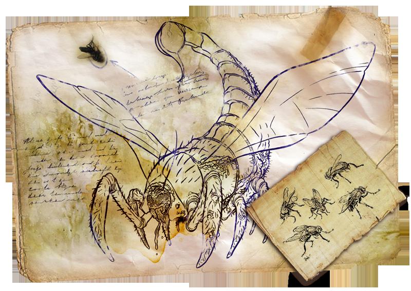 bestiarioMoscorpion